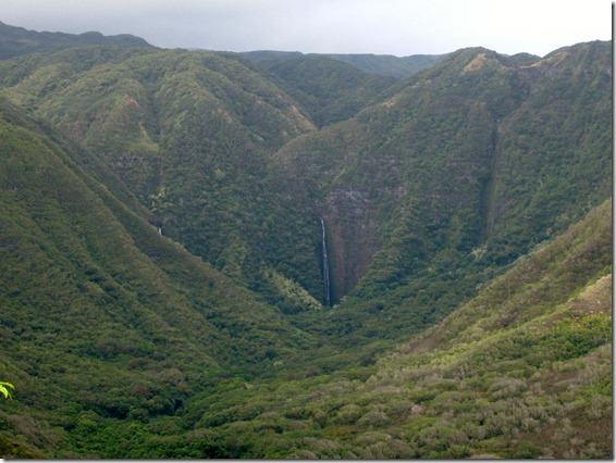 View of the water fall