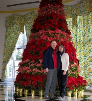 The Greenbrier - poinsettia tree