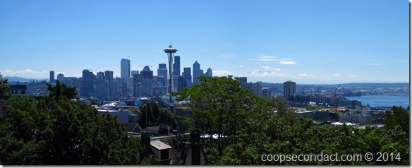 View from Kerry Park (Mt. Ranier in the background)