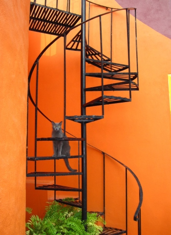 Spiral stairs to rooftop