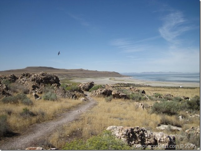 Antelope Island - Bridger Bay