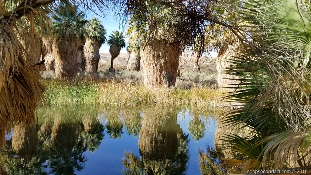 Desert Hot Springs Ca Second Act